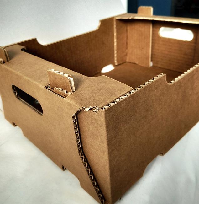 Caja de cartón frutas Lafepack Canarias